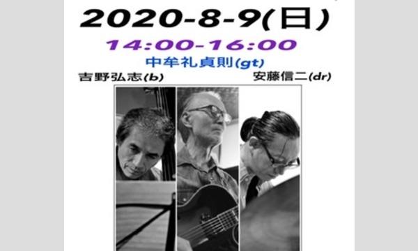 新子安しぇりるの8/9(日)14:00-中牟礼貞則feat安藤トリオライブイベント