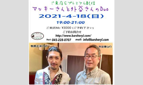 4/18(日)マッキーさんと外谷さんライブ@新子安しぇりる イベント画像1