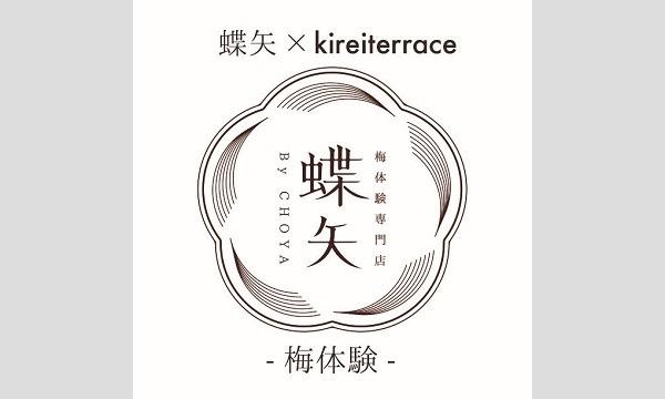 蝶矢×kirei terrace - 梅体験 - イベント画像1