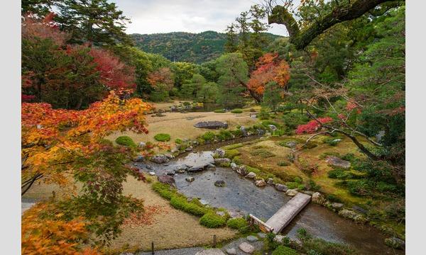 南禅寺界隈400年をめぐる日本庭園~年代ともに変わる庭園様式の違いを体感 イベント画像2