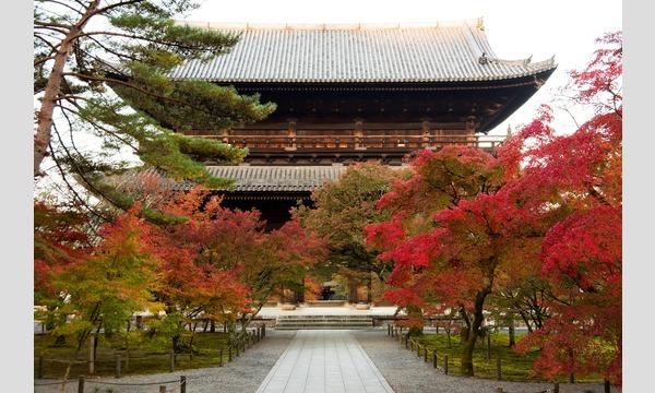 南禅寺界隈400年をめぐる日本庭園~年代ともに変わる庭園様式の違いを体感 イベント画像3
