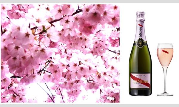 レインボー イベンツのマム・ロゼシャンパン・フリーフローお花見 Free-flow Mumm Rose Champagne Ohanamiイベント