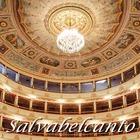 Salvabelcanto イベント販売主画像