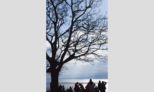 すずちゃんのカメラ講座 ~二宮・吾妻山の菜の花&冬の梅沢海岸~ イベント画像2