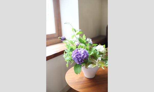 季節の花とくらす入門 -2018夏- イベント画像3