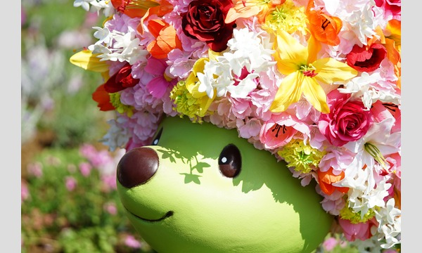 すずちゃんのカメラ講座 〜花やグリーンを魅力的に撮ろう!vol.2〜