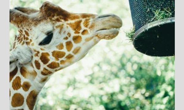 すずちゃんのカメラ講座 ~もっと上手に!動物園スナップ vol.2~ イベント画像1