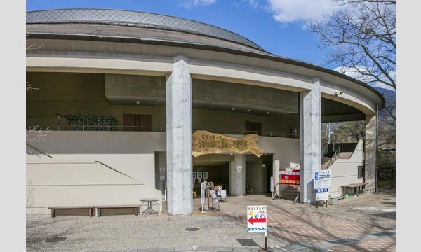 河口湖猿まわし劇場 入場チケット 最大24%OFF イベント画像2