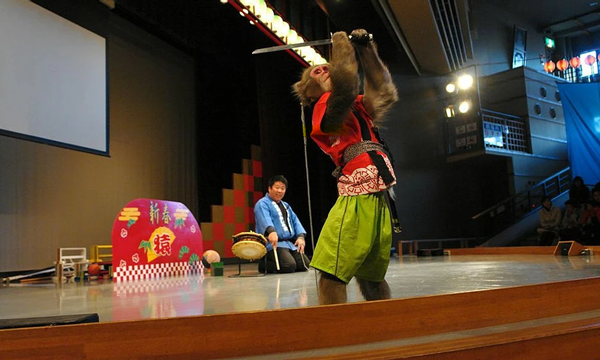 河口湖猿まわし劇場 入場チケット 最大24%OFF イベント画像3