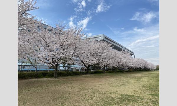4/4コスプラin行田市総合公園(車両展示イベント) イベント画像3
