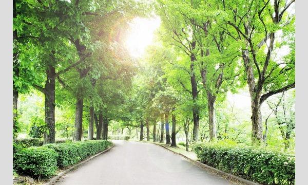 9月26日(木)光が丘撮影会|平日撮影会 イベント画像1