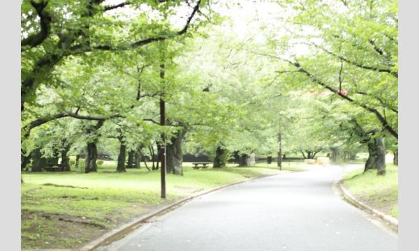 11月20日(水)光が丘エリア撮影会!|平日撮影会 イベント画像1