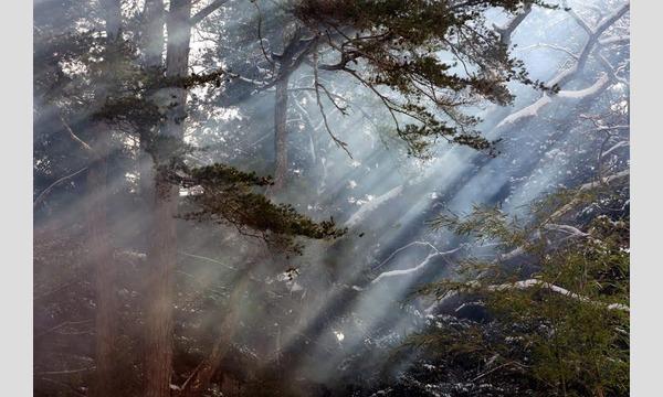 赤阪友昭「あ。わ。の月プロジェクト2017『陰陽五行と聖地巡礼』シリーズ vol. 02-熊野- イベント画像2