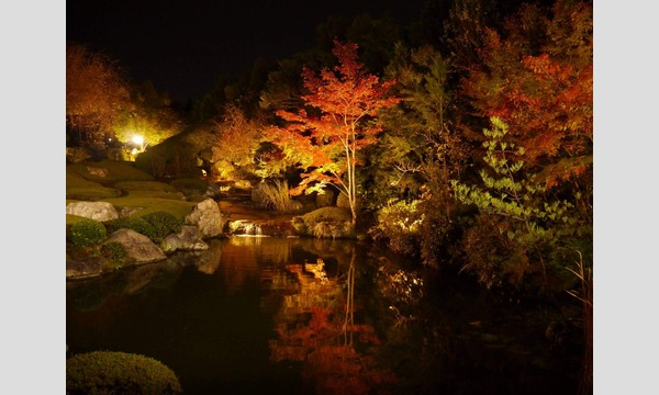 Nozomi Co., Ltd. / 株式会社のぞみ の妙心寺退蔵院「観楓会」夕食スペシャルプラン11/23(土)イベント
