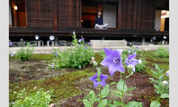 東福寺天得院 夜空の坐禅 イベント画像1