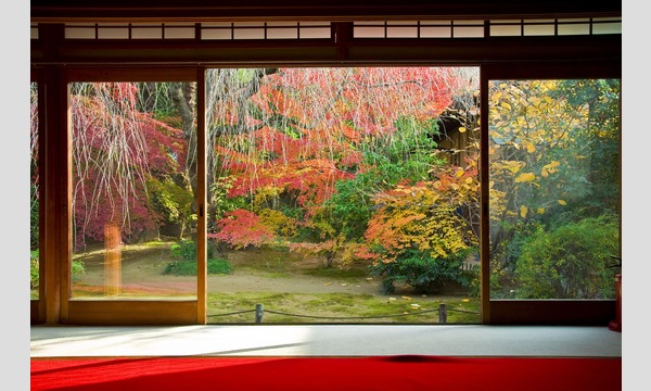 妙心寺退蔵院「観楓会」昼食プラン11/19(火) イベント画像2