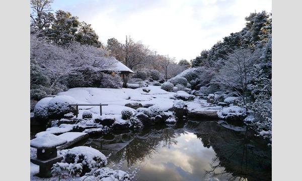 妙心寺退蔵院 1/19 初春 初夢の会 イベント画像3
