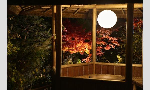 妙心寺退蔵院 夜間特別拝観1 Night Illuminations Tour1  11/21(火) イベント画像2