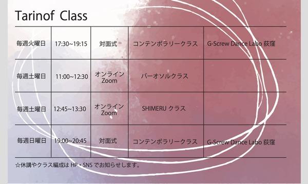 11月TDCオンラインレッスン[バーオソルコンテンポラリークラス]&[SHIMERUクラス] イベント画像2
