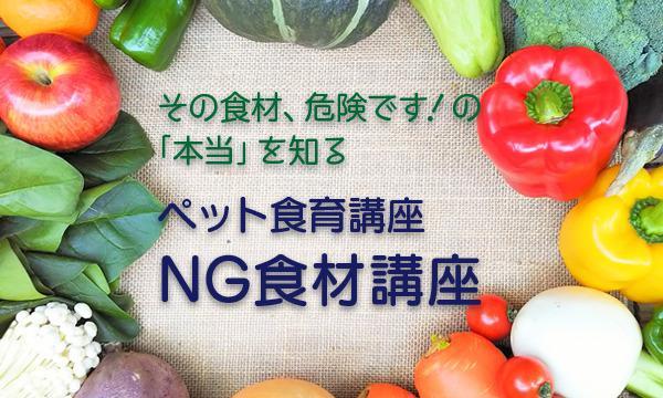 犬・猫のための「NG食材講座」<宮城県仙台市> イベント画像1