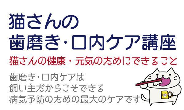 猫対象/結果がでる!猫さんの歯磨き・口内ケア講座<宮城県仙台市> イベント画像1