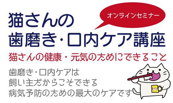 ペット食育上級指導士・鈴木美由起の猫対象/結果がでる!猫さんの歯磨き・口内ケアWEBセミナーイベント