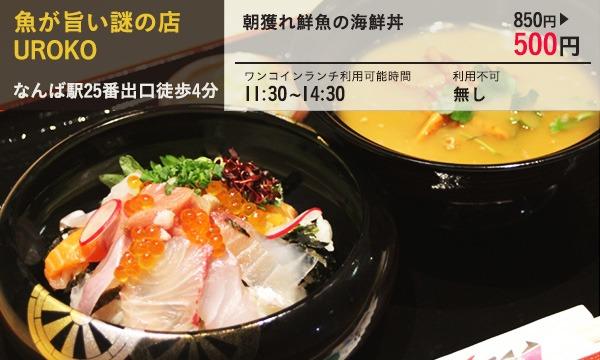 08.魚が旨い謎の店 UROKO 朝獲れ鮮魚の海鮮丼