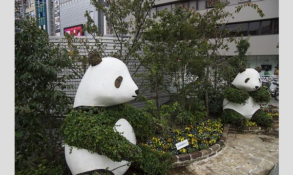 12/2(土)うさぎ幼稚園 撮影会 上野エリア イベント画像3
