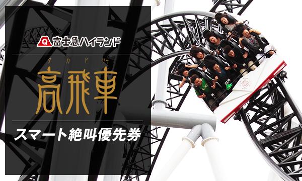8/22(火) D 『高飛車』 スマート絶叫優先券 _ 当日限り有効 in山梨イベント