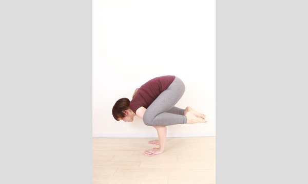 *Online yoga class semi private lesson ~arms balance~ イベント画像1