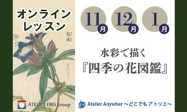 【11・12・1月】水彩で描く『四季の花図鑑』オンライン(アトリエ・エビス) イベント画像1
