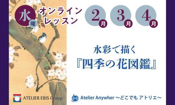【2・3・4月:水曜】水彩で描く『四季の花図鑑』オンライン(アトリエ・エビス) イベント画像1