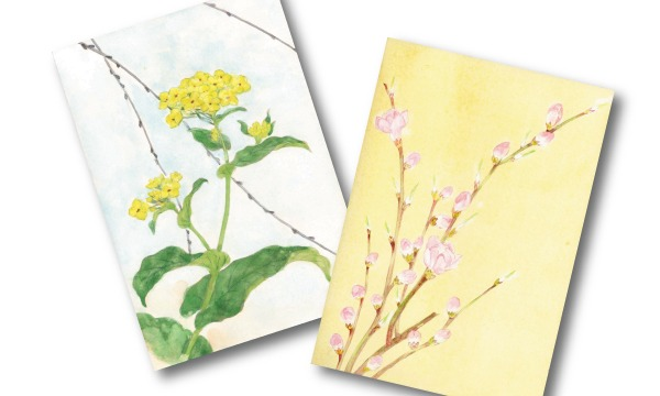 【2・3・4月:水曜】水彩で描く『四季の花図鑑』オンライン(アトリエ・エビス) イベント画像2