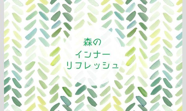 8/7(日) 森のインナーリフレッシュ~奥多摩の森で過ごす休日~ イベント画像1