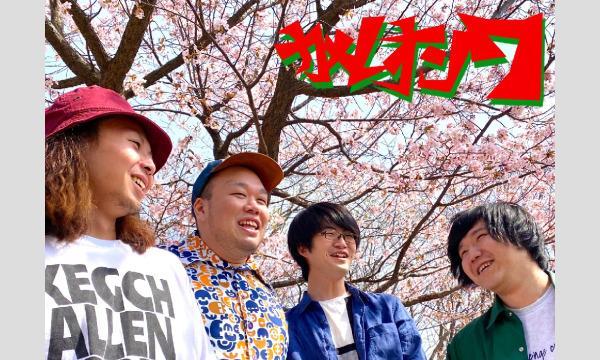 PLAYLIST Presents TOP OF ROCK 3MAN LIVE イベント画像2