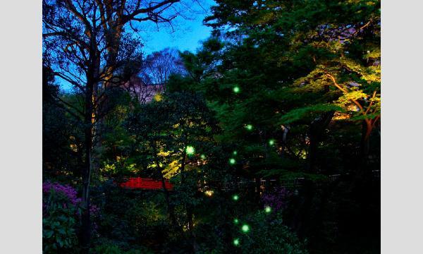 ホテル椿山荘東京 庭園入場券【5月】 イベント画像2