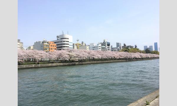 3/30(土)Tsunagary Cafe お花見 2019(大阪) イベント画像2