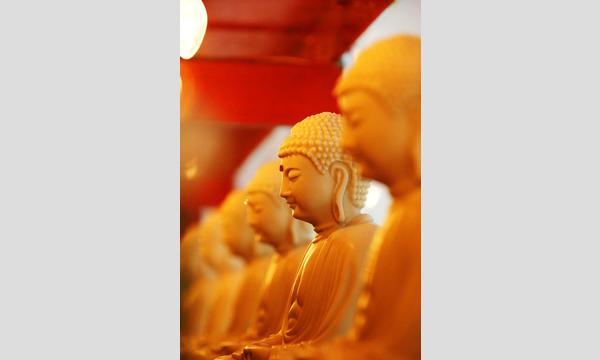 7/14(日)やさしい仏教のめいそうとお話:マインドフルネスと念仏/吉村均 イベント画像1