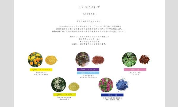 5/19(土)簡単草木染めワークショップ/小森優美 イベント画像2