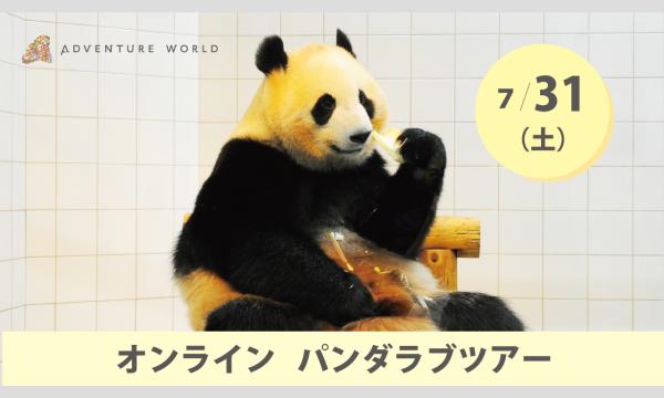 アドベンチャーワールド オンラインパンダラブツアー【7/31(土)】 イベント画像1