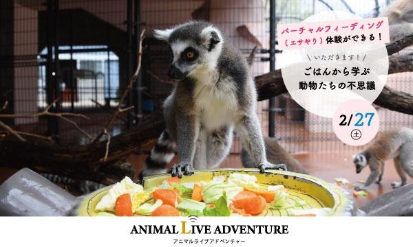 【2/27(土)】アドベンチャーワールド アニマルキッチン~いただきます~ イベント画像1