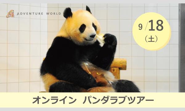 アドベンチャーワールド オンラインパンダラブツアー【9/18(土)】 イベント画像1