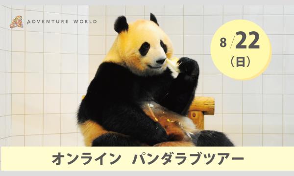 アドベンチャーワールド オンラインパンダラブツアー【8/22(日)】 イベント画像1