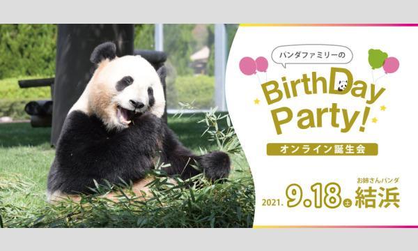 ジャイアントパンダ結浜(ゆいひん)5歳オンライン誕生会 9月18日(土)アドベンチャーワールド