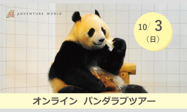 アドベンチャーワールドのアドベンチャーワールド オンラインパンダラブツアー【10/3(日)】イベント