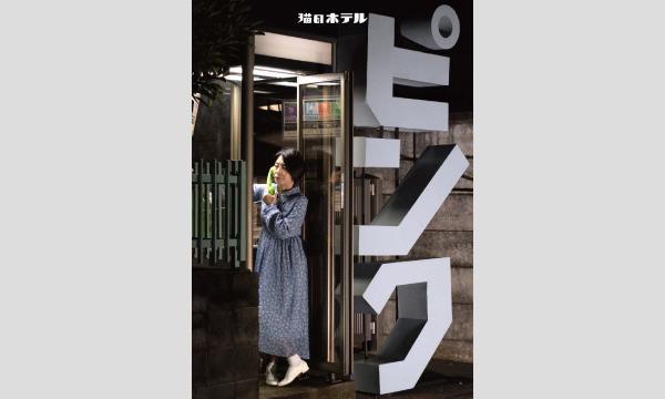 劇団 猫のホテル 30周年記念本公演「ピンク」 イベント画像1