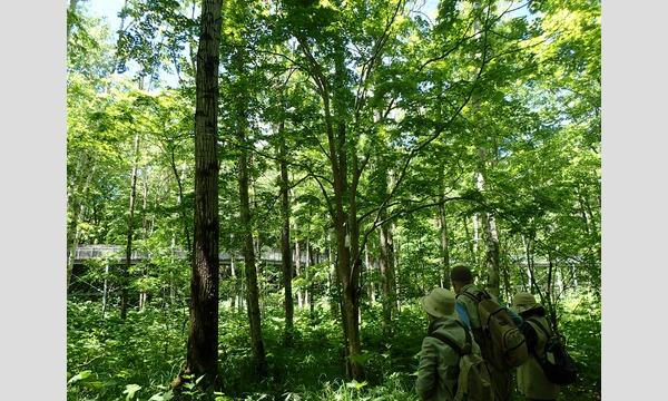 CuiCui+ ~PENTAX KP、K-70と歩く滝野の森~ イベント画像2