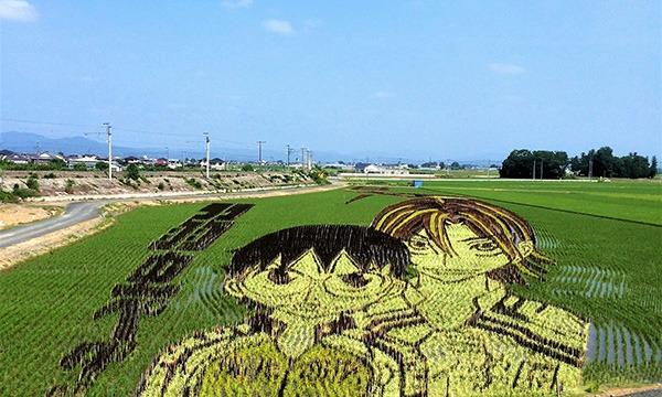 おやま田んぼアート (Oyama Rice Paddy Art) 見学会&スタンプラリー 4会場をめぐるバスツアー in栃木イベント