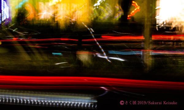 【ギャラリートーク追加販売】櫻井圭佑写真展 「さく展」 イベント画像3