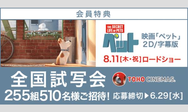 【Yahoo!チケットプラス特典】「ペット」試写会にご招待! イベント画像1